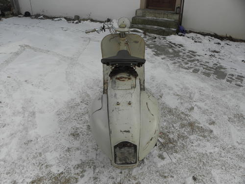P3020006.JPG