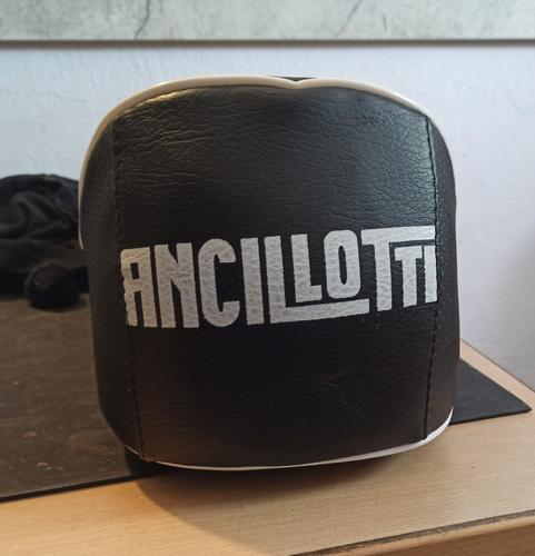 Ancelotti 1.jpg